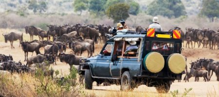 Travel Ease Tours and Safaris